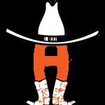 HLSR logo